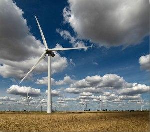 Bicker-Fen-Wind-Farm